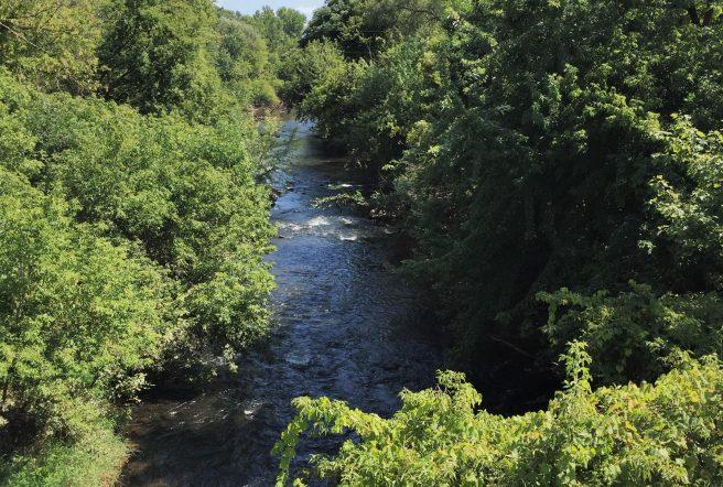 Duncan Creek B